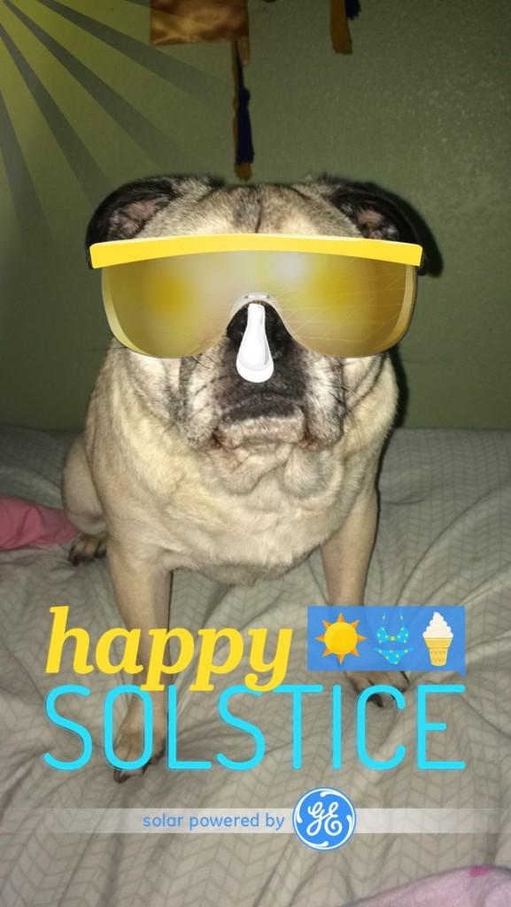 Summer Solstice Snapchat Pug