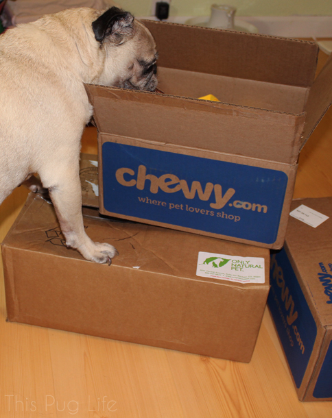 Pug Opening Package