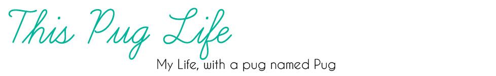 This Pug Life