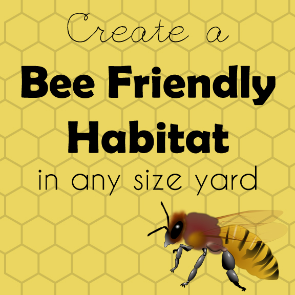 Create a Bee Friendly Habitat in any size yard