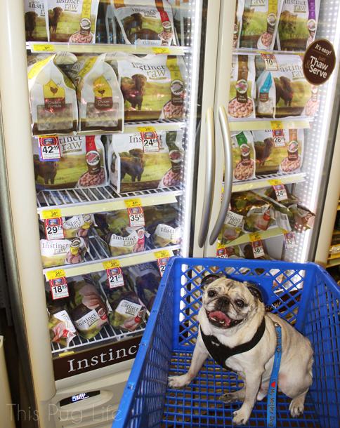 Pug Instinct Raw Petsmart