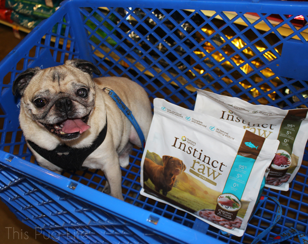 Pug Instinct Raw Petsmart2