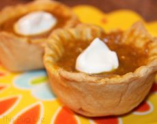 Mini Pumpkin Pies for Dogs Step by Step Tutorial