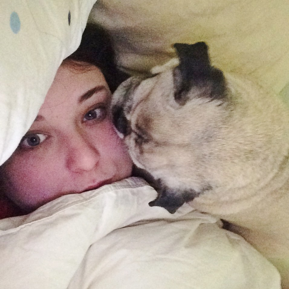Pug invades personal space