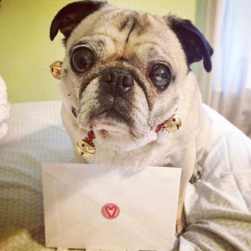 Pug Mail