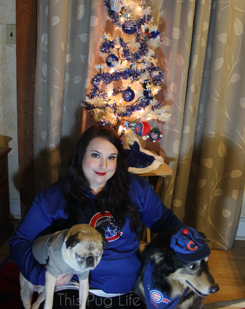 Cubs Christmas Portrait Outtake2