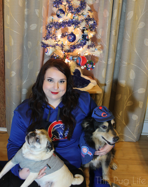 Cubs Christmas Portrait Outtake3