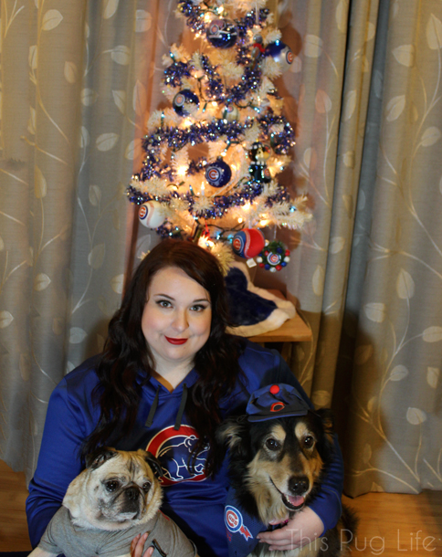 Cubs Christmas Portrait with Pug and dog
