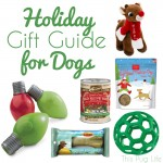 Holiday Gift Guide for Dogs 2015 + Giveaway! {Closed}