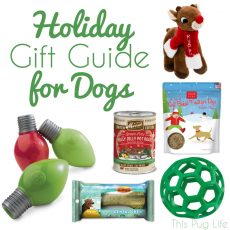 Holiday Gift Guide for Dogs 2015