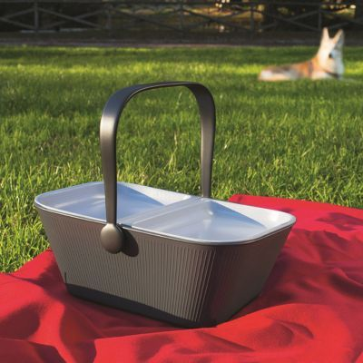 PetNic picnic basket for pets