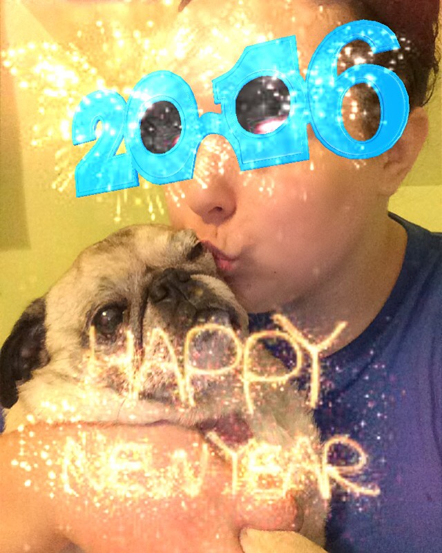 New Year's Eve Pug Snapchat Story