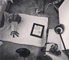 Newborn Photoshoot Setup with Stuffed Broccoli