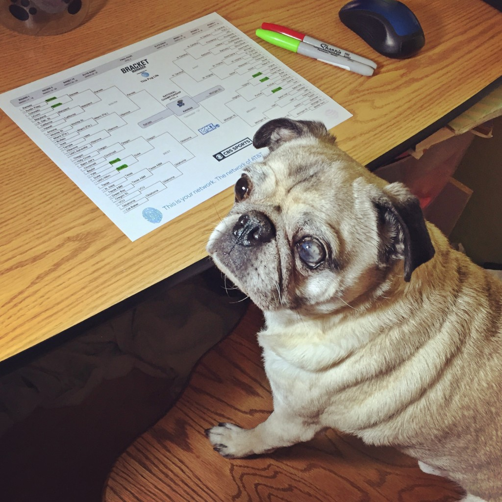 Pug March Madness Final Four Bracket