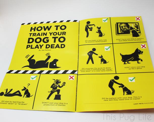 Loot Pets February Magazine2
