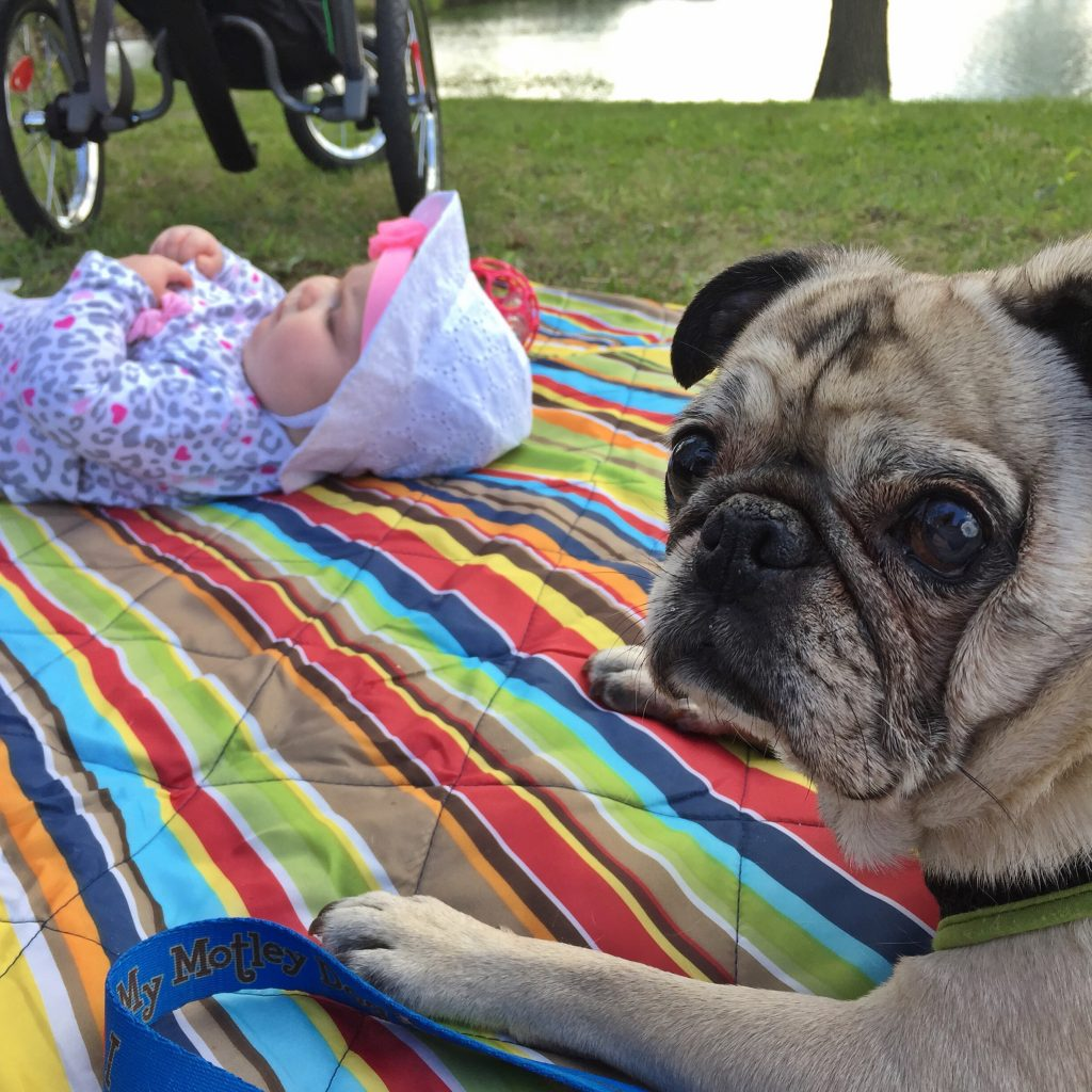 Earth Day Pug and Baby