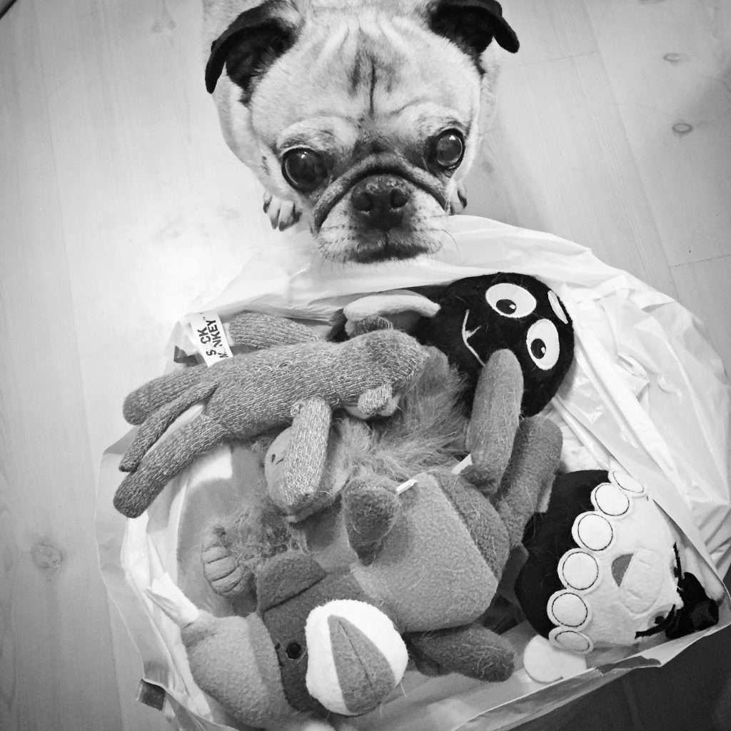 Pug Toy Donation