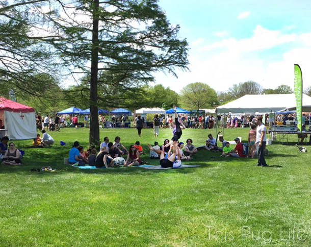 St. Louis Earth Day Festival Yoga
