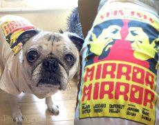 Pug Wearing Loot Pets March 2016 Star Trek Mirror Mirror