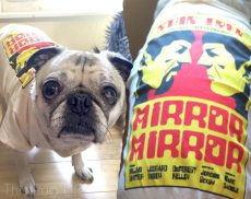 Pug Wearing Loot Pets March 2016 Star Trek Mirror Mirror