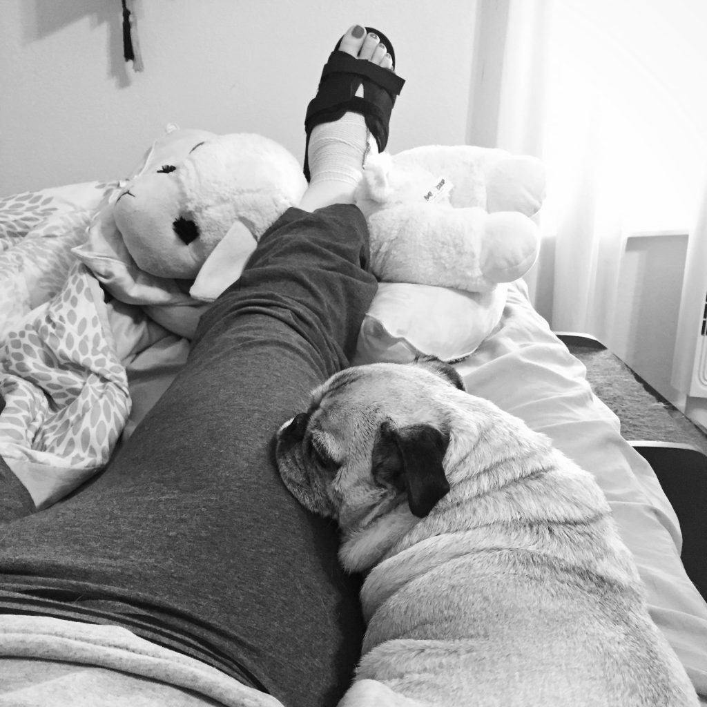 Pug Nurse after surgery