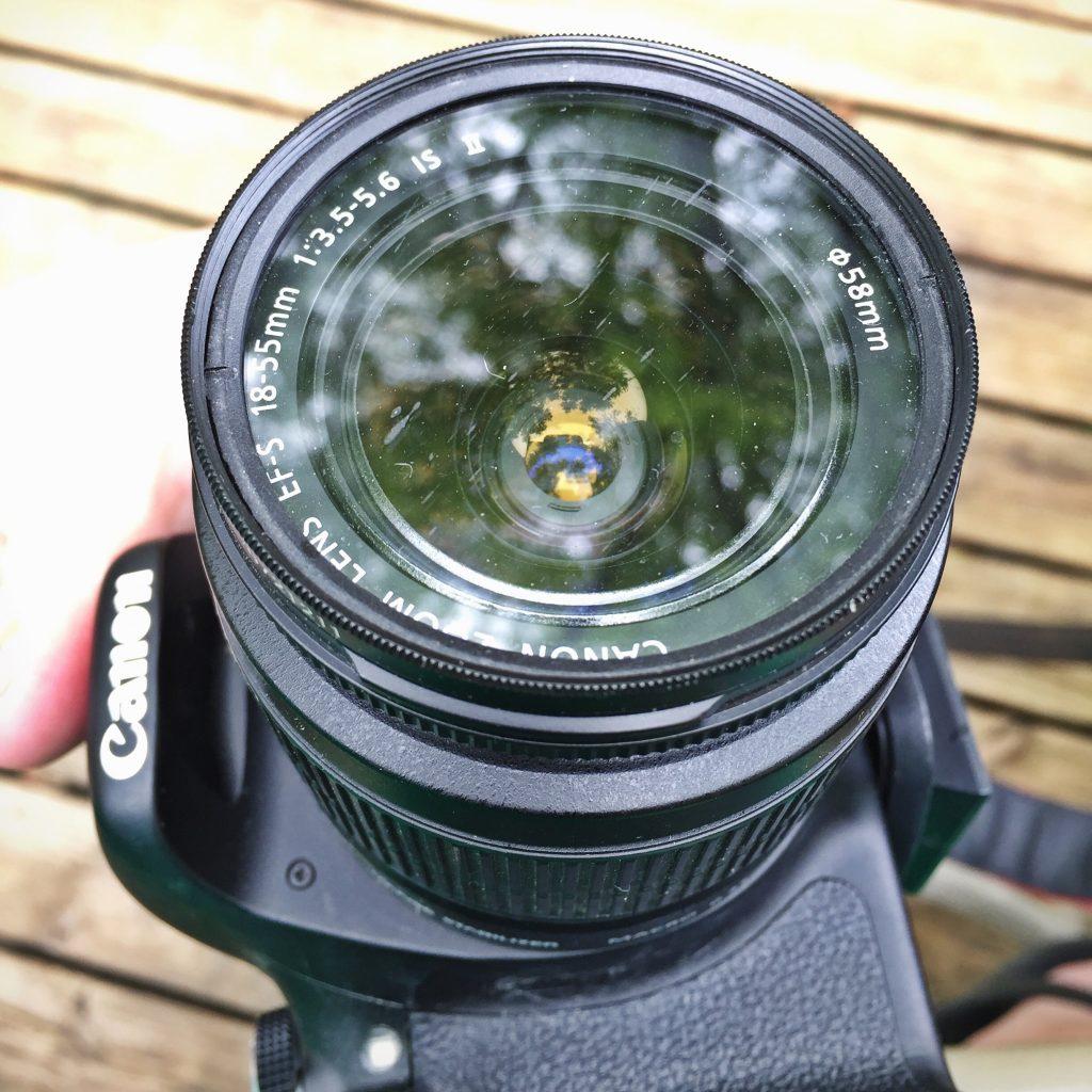 Pug Sneeze on Camera Lens