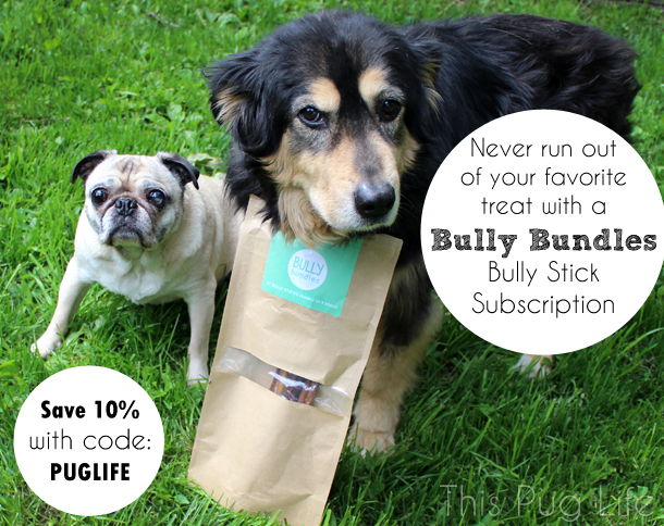Bully Bundles Bully Stick Subscription