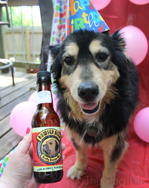 Rescue Dog 13th Birthday Party Doggy Beer