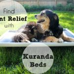 Relieve Sore Joints with a Cozy Cot from Kuranda