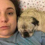 The Joy and Heartbreak of Senior Pets