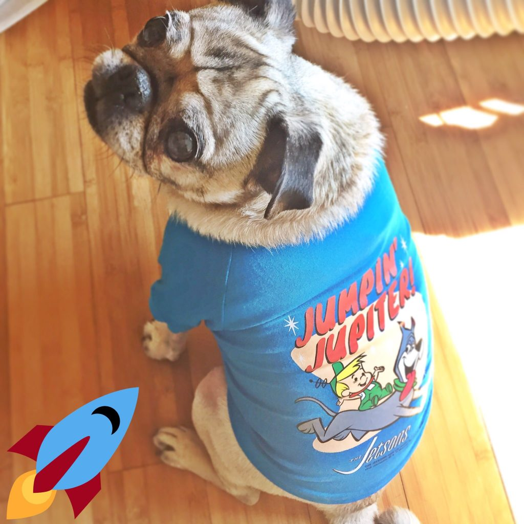 Pug Loot Pets Jetsons Shirt