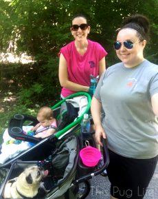 Strut Your Mutt 9000 Step Challenge Pug Stroller