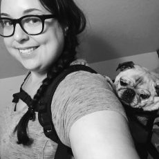 Pug K9 Sport Sack dog carrier