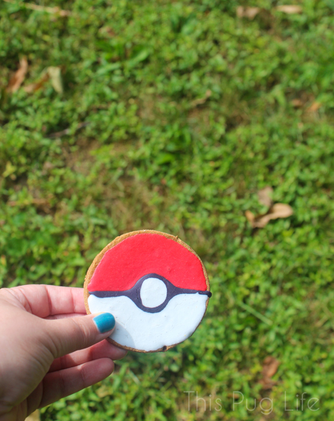 Pokeball Dog Treat