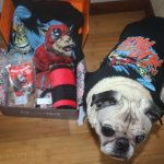 "Loot Pets August 2016 ""Anti-Hero"" Review"