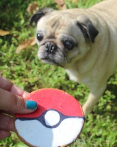 Pug Pokeball Dog Treat