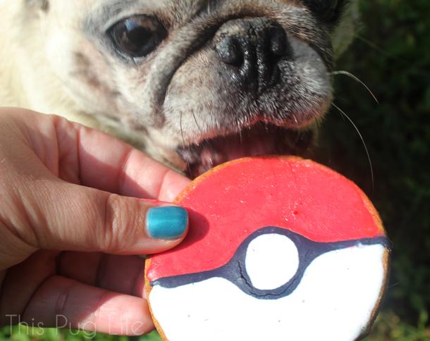 Pug Pokeball Dog Treat