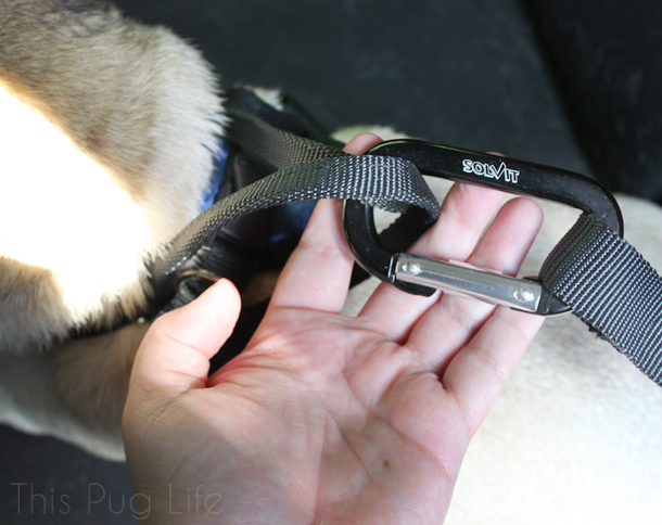 Solvit Deluxe Car Safety Harness 3-Point-LATCH Attachment