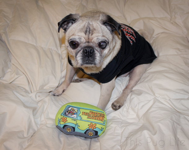 Loot Pets November 2016 Mystery Machine dog toy