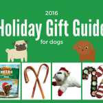 Holiday Gift Guide for Dogs 2016 + Giveaway