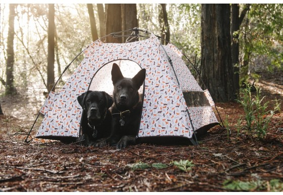 P.L.A.Y. Outdoor Dog Tent
