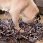 Pug Reviews: PAW5 Wooly Snuffle Mat