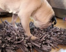 Pug PAW5 Wooly Snuffle Mat