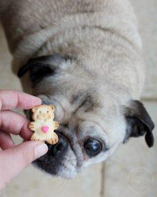 DIY Valentine Treats Grandma Lucy's Bears