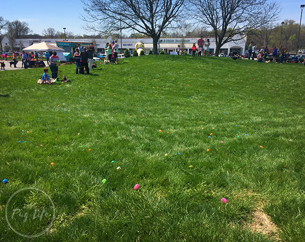 Treats Unleashed Easter Egg Hunt for dogs