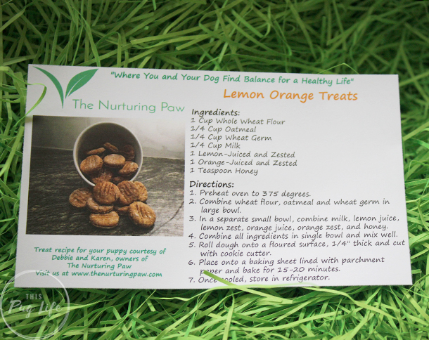 The Nurturing Paw Homemade Treat recipe
