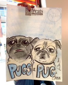 pug caricature drawing