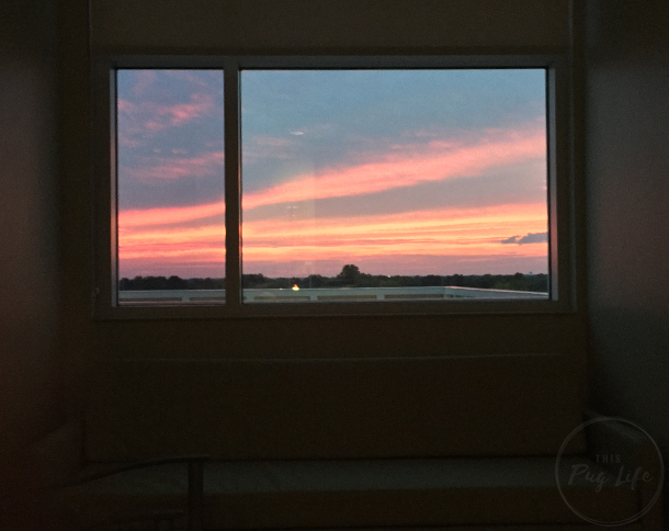 Sunset from my hospital room window
