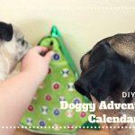 DIY Advent Calendar for Dogs