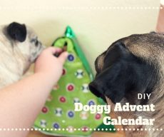 DIY Advent Calendar for Dogs
